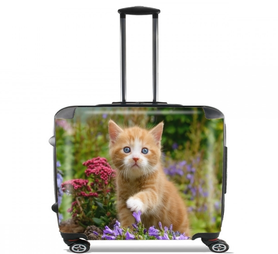 Cute ginger kitten in a flowery garden, lovely and enchanting cat voor Pilotenkoffer