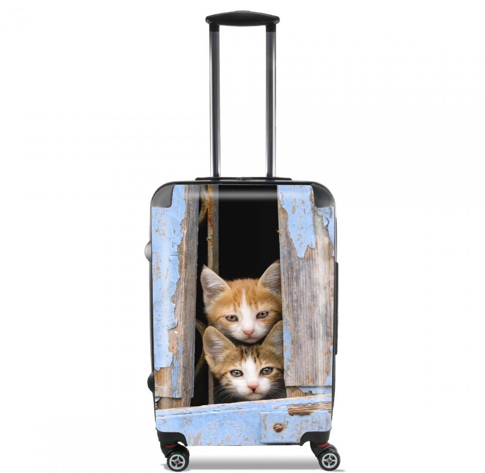 valise bagage cabine petits chatons mignons la fen tre ancienne. Black Bedroom Furniture Sets. Home Design Ideas